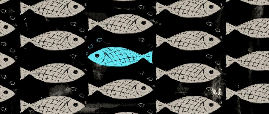 Un banco di pesci disegnati su sfondo nero tutti bianchi che vanno verso destra e solo uno, al centro, azzurro che va a sinistra